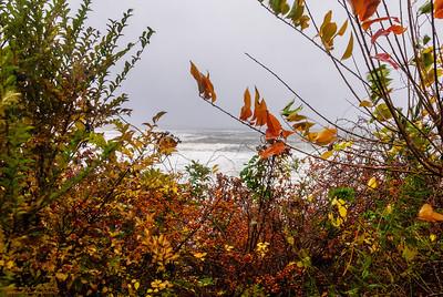 """Hurricane Sandy framed by Autumn"""