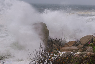Hurricane Sandy - Magnolia Shore, Gloucester, MA