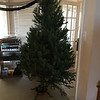 Dec 9, 2016 - Christmas Tree at 3065 Windsong