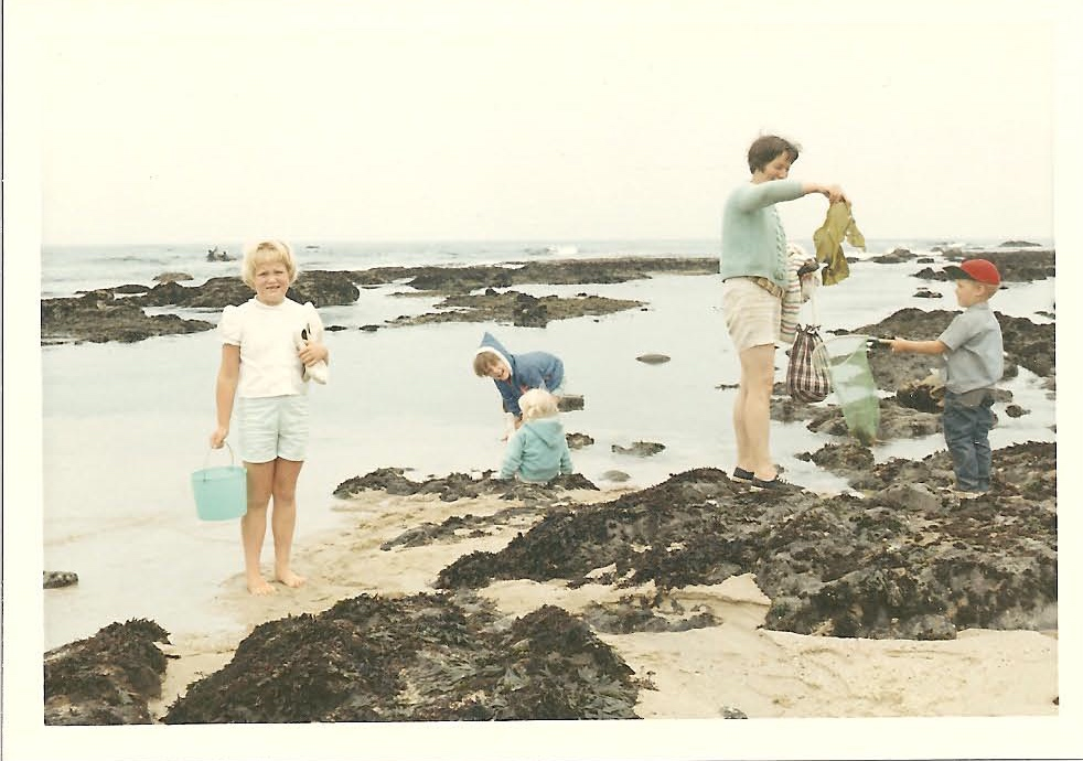 Exploring the tide pools  -  Early 1970's