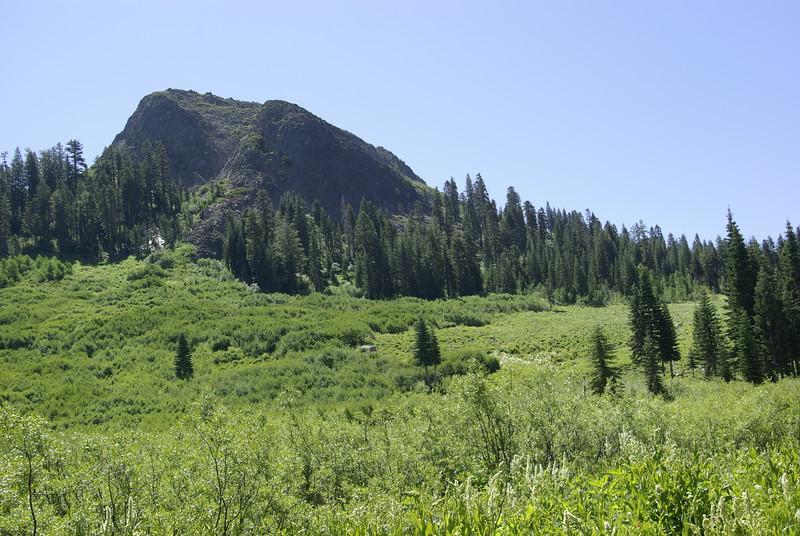 Devils Peak Meadow, Emigrant Camp Area