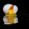 Broken Eggsperiment  0367  w24