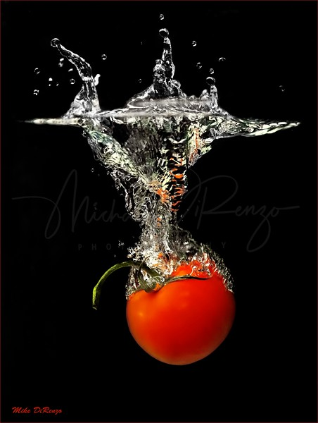 Tomato in the Soup 7889 w48