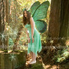 1nicole_faery5