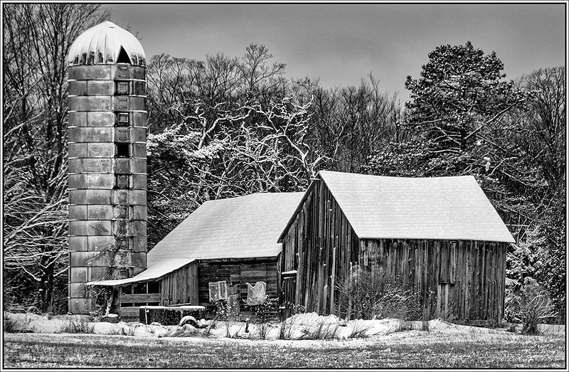 Wildwood Road Farm