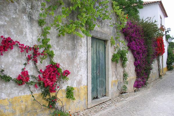 Turquoise door & Bougainvilla, Obidos, Portugal