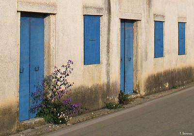 Doors, Windows, Walls...