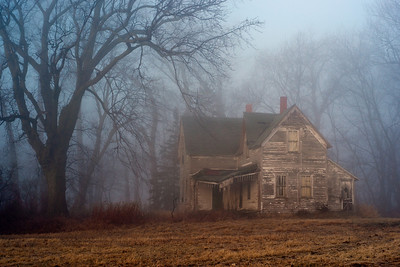 Fog on the homestead