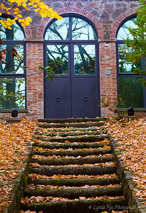 Steps Covered With Fall Leaves