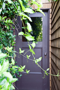 purple-garden-door