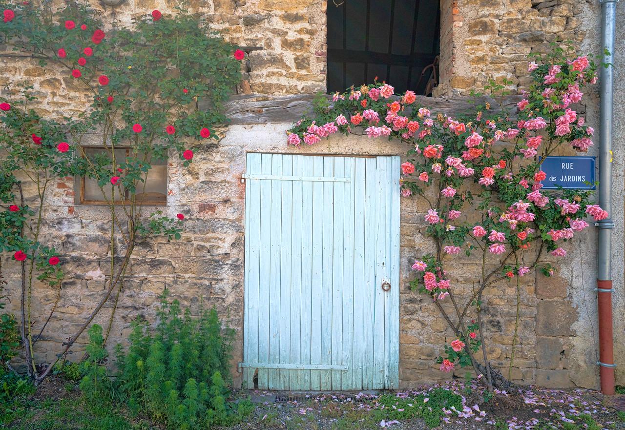 Rose Framed Wall at Rue de Jardins