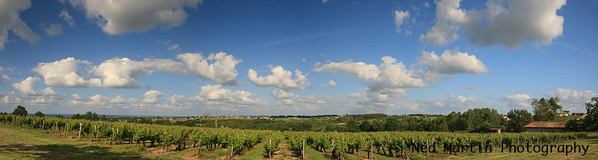Panorama of view from our Saussignac House