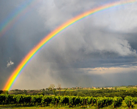 Rainbow over vineyards, Saussignac, France