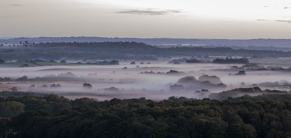 Morning Mist in the Purbeck Hills