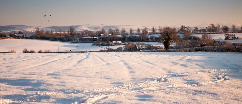 Snow-covered Dorset fields