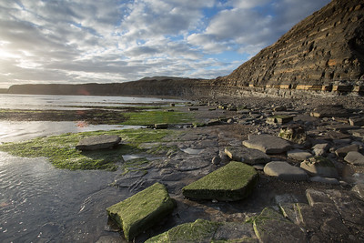 Seams of rock, Kimmeridge