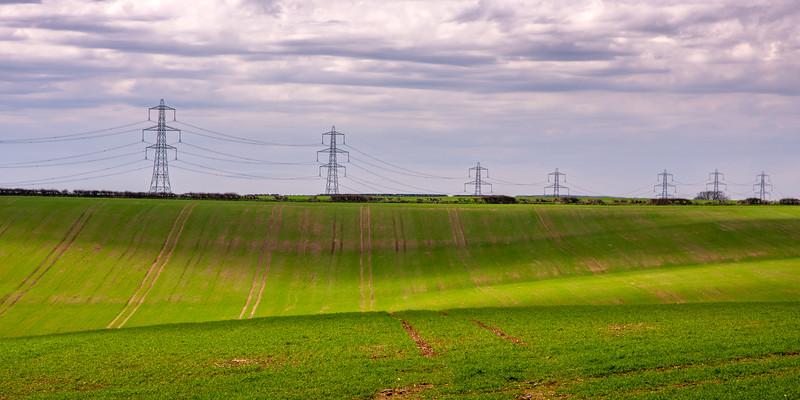 Pylons marching over Dorset farmland