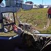 chevreuil-port-menier-camion
