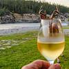 verre-vin-chevreuil-anticosti