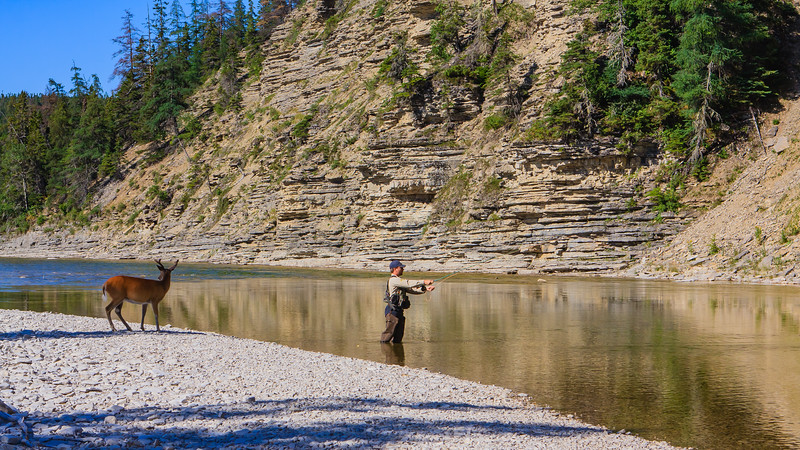 pêcheur-chevreuil-riviere-jupiter