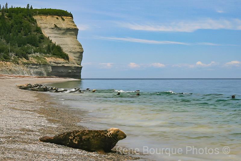 Photos René Bourque