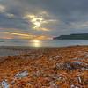 Algues rejetées par une tempête, baie McDonald, septembre 2017