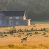 Vieille maison de Baie-Sainte-Claire à l'ouest d'Anticosti