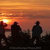 silhouette-coucher-soleil-safari-photo