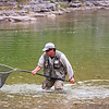 Guide netting a salmon, jupiter river, anticosti island