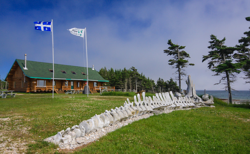 Chicotte inn, skeleton of  blue whale, Anticosti