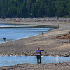 Deer on the beach, photo safari Anticosti, photographer