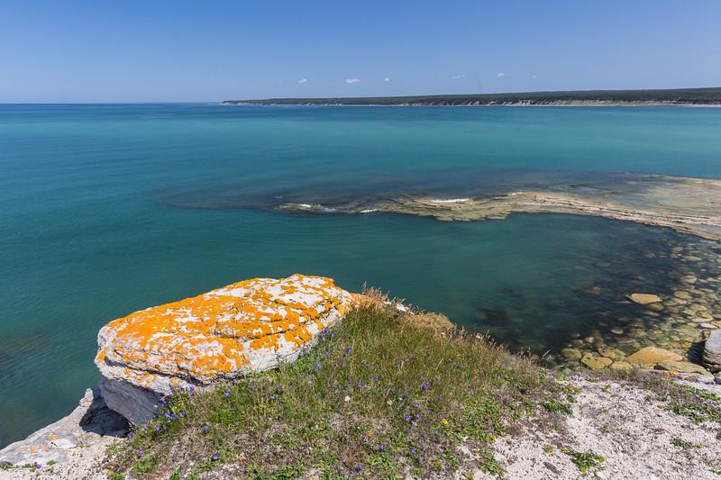 Bay of south west point, anticosti island, rock, lichens