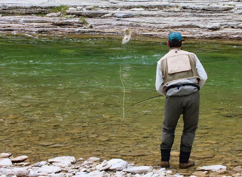 Jumping salmon, jupiter river, anticosti island