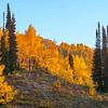 Bloods Lake Trail Sunrise UT