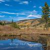 Mt. Rose Meadows Autumn Pond