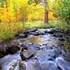 Thomas Creek in Fall