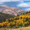 Great Basin Incoming