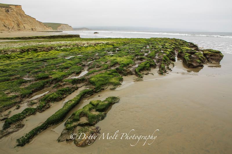 Moss Drakes Beach PRNS