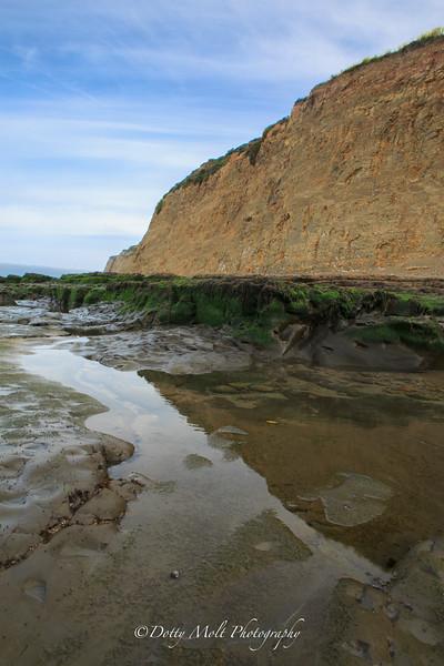 Davenport Beach, California