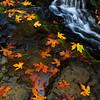 Fairy Tale Falls