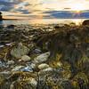 Samoset Shoreline Sunrise