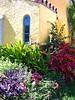 Palm Beach Garden
