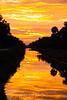 Golden Canal