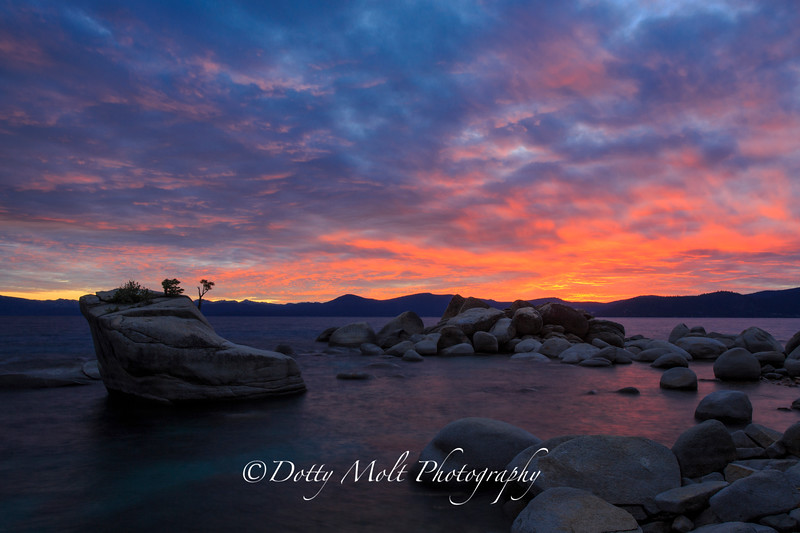 Bonsai Rock Shoreline Sunset