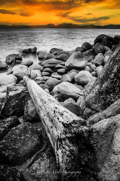 LogOn Chimney Beach Black and White and Orange