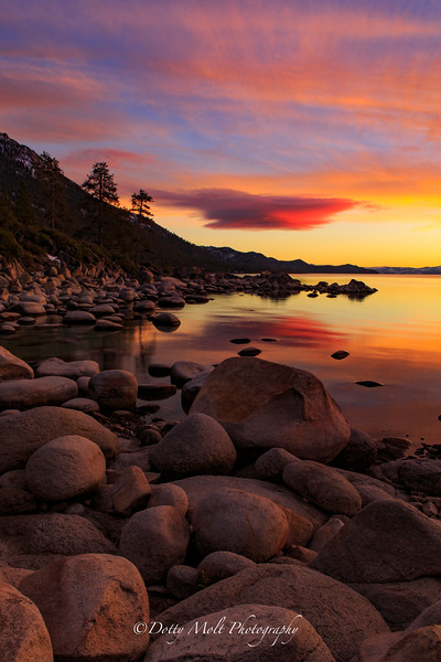 UFO Sunset
