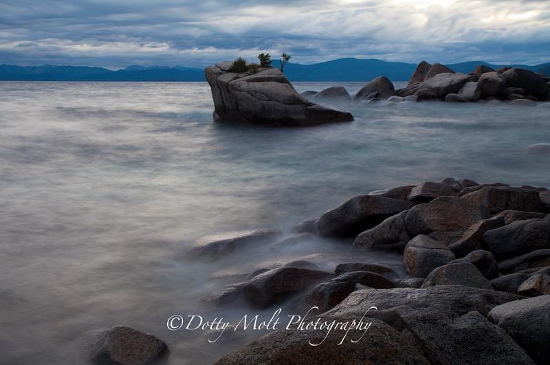 Bonsai After Dark, Lake Tahoe, NV