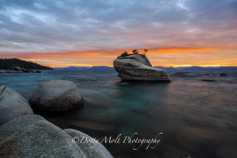 Bonsai Rock, Lake Tahoe East Shore, Nevada.