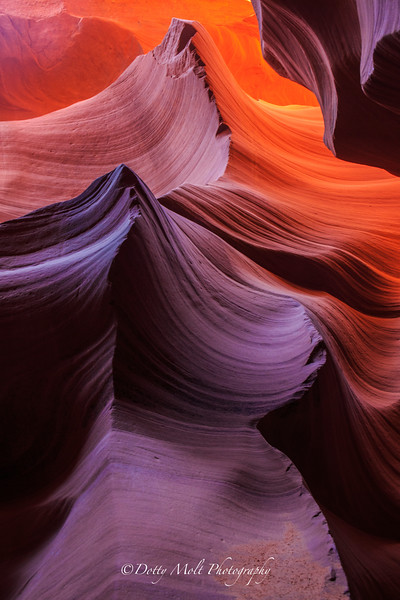Lower Antelope Canyon Page, AZ
