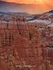 Bryce Canyon Golden Sunrise